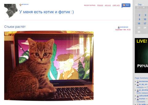 kotofoto.livejournal.com - У меня есть котик и фотик :)
