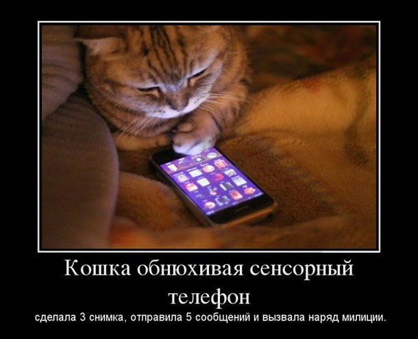http://www.big-big.ru/images/screenshots/demotivator7/demotivatoryi_06.jpg