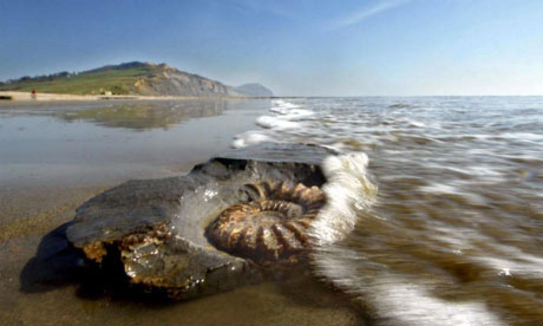 14 Самые необычные пляжи мира (фото)