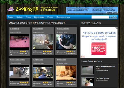 zooking.ru - Лучшие видео-приколы с животными